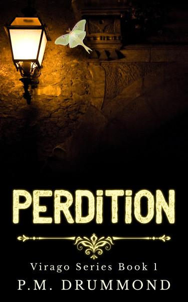 Perdition, Virago Series Book 1